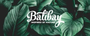 Balibay Header Blätter